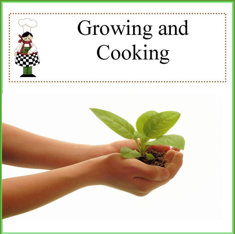 Grow It and Cook It Theme Camp