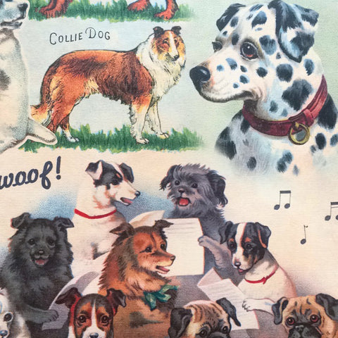 Great new gift wrap at Tender Land Home! Bow WOW! #color #summer #catskills #upstateny #iloveny #dog #hudsonvalley #phoenicia #phoeniciany #gifts #paper and check out Tenderlandhome.com