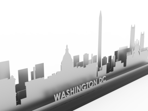 "Washington 3-D ""Nanoscape"" in Stainless Steel"
