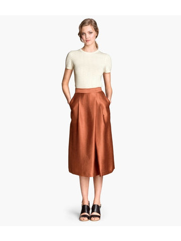 H&M Metallic Midi Skirt Sz. 6