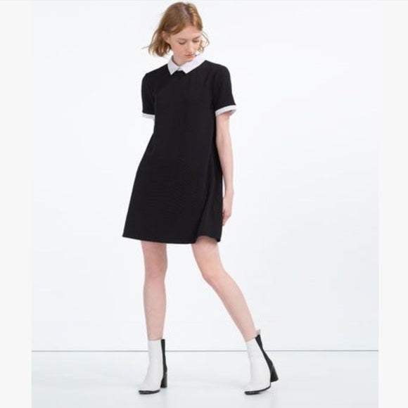 Zara Black dress White Peter Pan Collar Sz. S