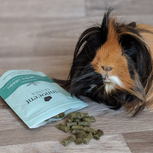 PRODUCT REVIEW - THE INNOCENT PET CO. GUINEA PIG TREATS
