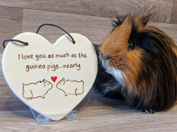 Ceramic Hanging Heart - 'I love you as much as the guinea pigs...nearly'