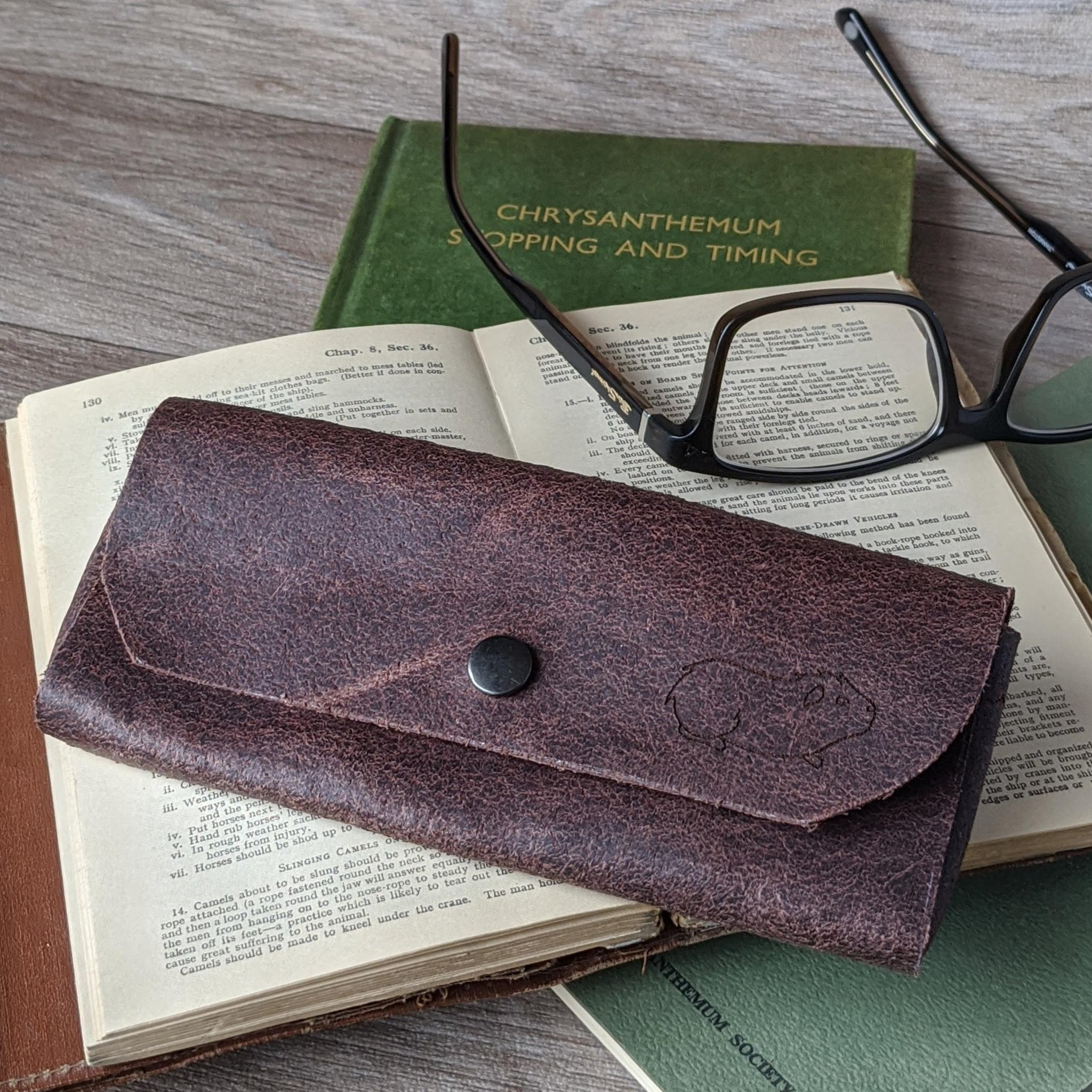 Guinea Pig Glasses Case - Brown Leather