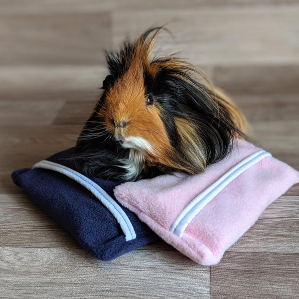 Guinea Pig Ice Pack  - Blue