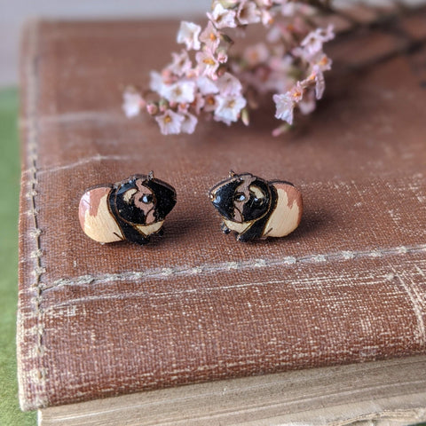 Guinea Pig Stud Earrings - Tricolour