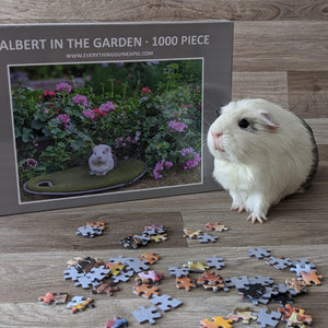 Guinea Pig Jigsaw Puzzle 1000 piece - Albert in the Garden