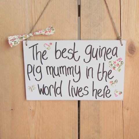 Handmade Guinea Pig Mummy Wooden Sign
