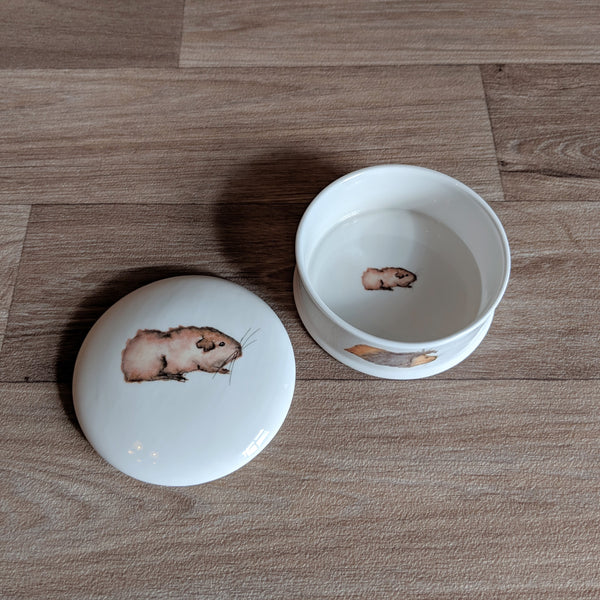 Fine China Guinea Pig Trinket Box (Gertie)