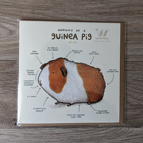 Anatomy of a Guinea Pig Card