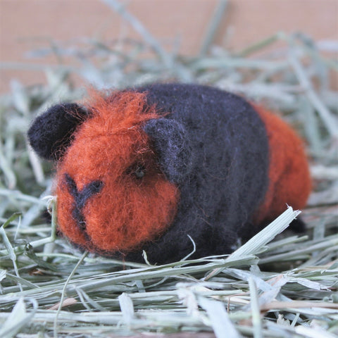 Guinea Pig Needle Felting Craft Kit - Bertie Black & Tan