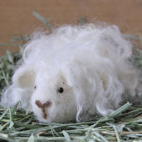 Guinea Pig Needle Felting Craft Kit - Penelope White Texel