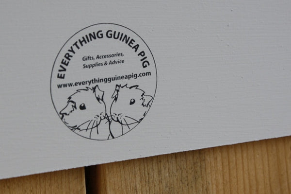 Handmade Hanging Wooden Saying Sign - Everything Guinea Pig  - 3