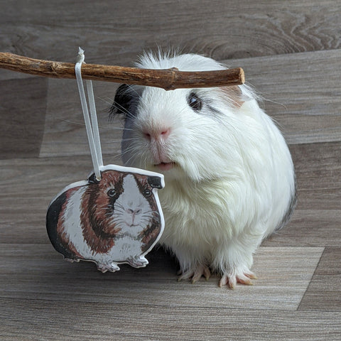 Guinea Pig Hanging Decoration