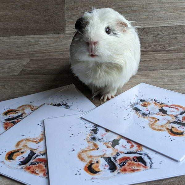 Piggy in the Middle Card