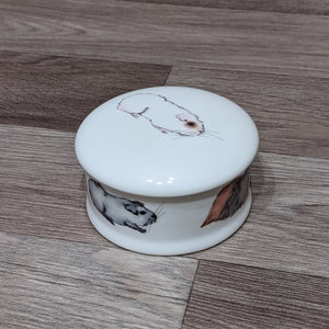 Fine China Guinea Pig Trinket Box (Ernie)