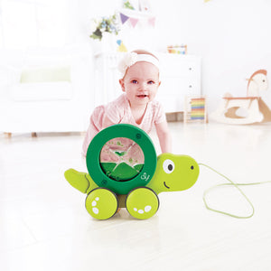 Hape Tito Pull Along turtle toy in the packaging
