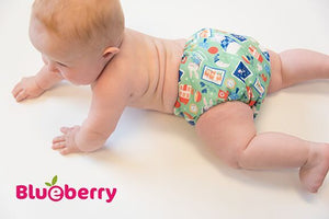 Blueberry NEWBORN Simplex Organic All-in-One Diaper, Blueberry print, purple and blue blueberries on mint green background, made in USA,  6-16 pounds