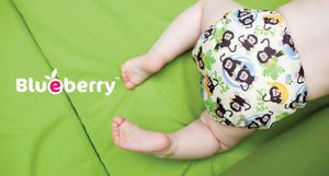 Blueberry Organic One-Size Simplex All-in-One Diaper