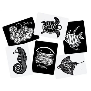 Wee gallery pets black and white art cards depicting a dog, cat, rabbit, hamster, goldfish, and iguana