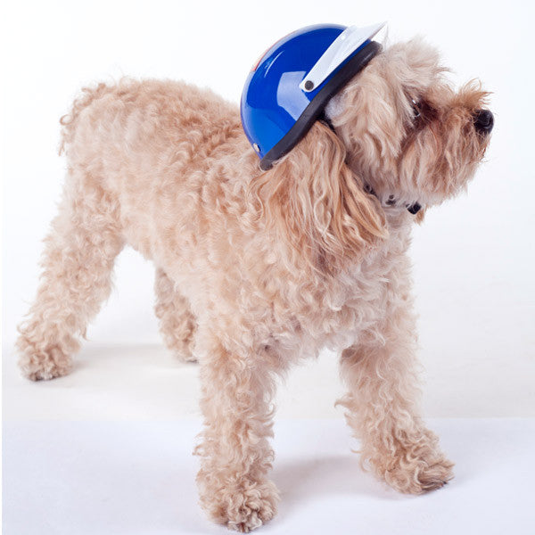 Dog Helmet - Super Dog- Model
