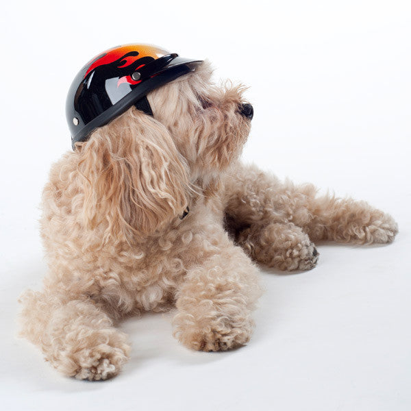 Dog Helmet - Flame - Model