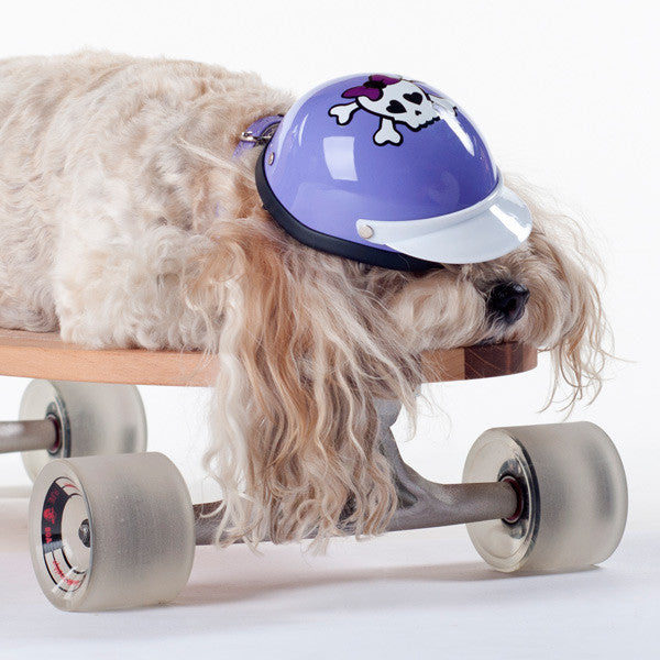Dog Helmet - Purple Skull - Model02