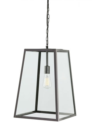 Danyale Clear/Black Pendant Light