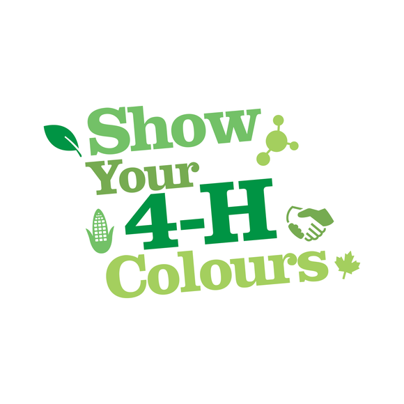 Show Your 4-H Colors