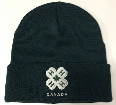 Cuffed Toque - Forest Green