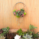 "Metal Heart Living Succulent Wreath 4.5""W x 7""L"