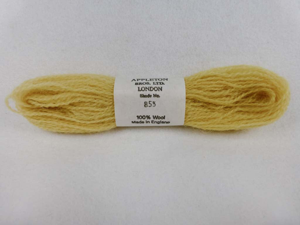 Appleton Wool 855 NC by Appleton  From Beehive Needle Arts