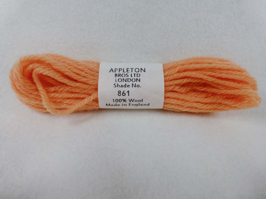Appleton Wool T861 NC by Appleton  From Beehive Needle Arts