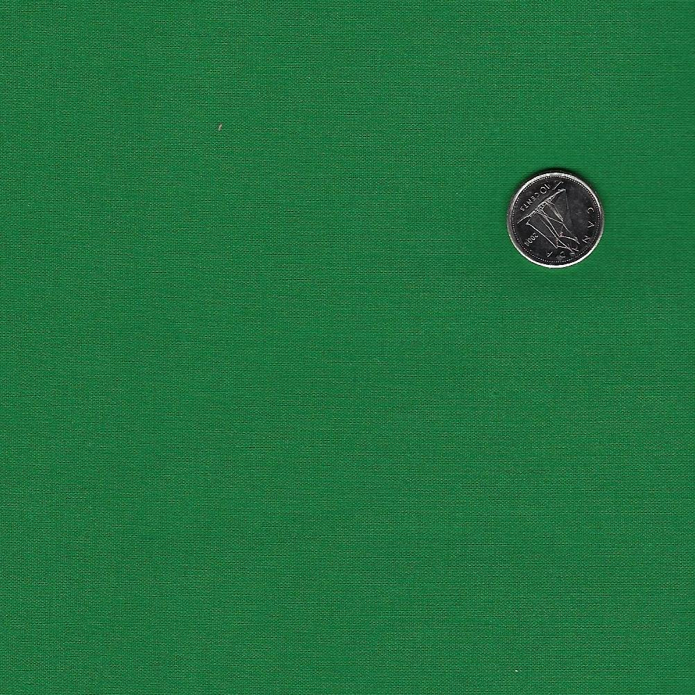 Cotton Solids by American Made Brand - Dark Green