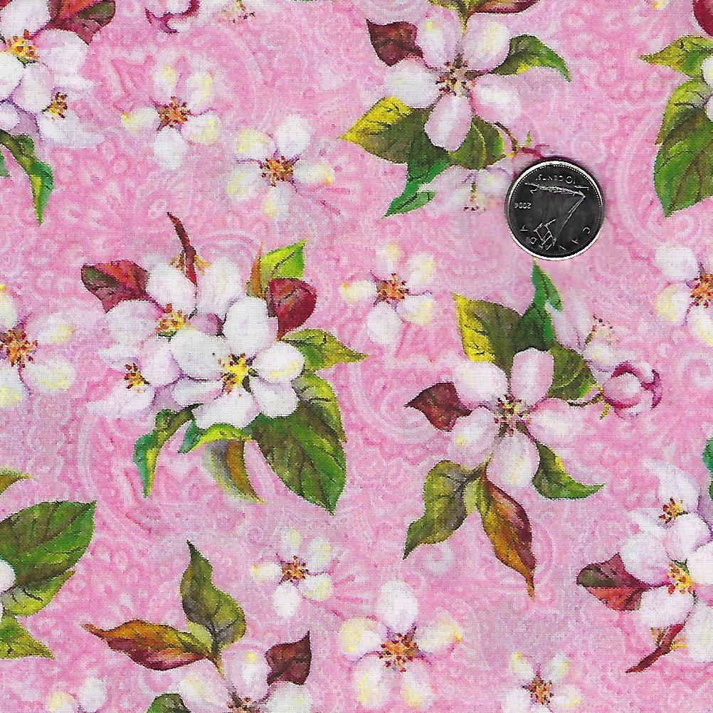Pretty in Pink par In the Beginning Fabrics - Background Pink Small Cherry Blossoms