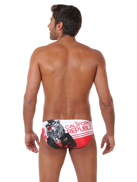 CA Republic Original ZUMO Swim Brief Back