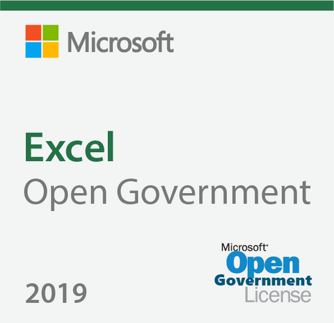 Microsoft Excel 2019 Open Government