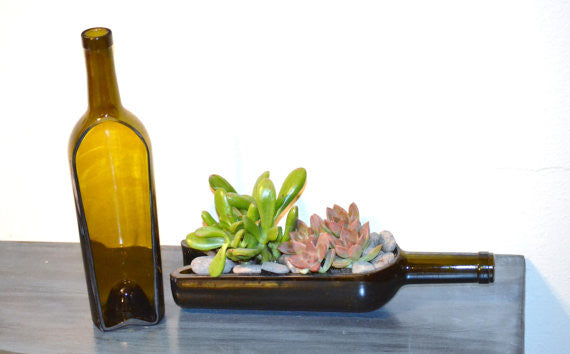 Wine bottle garden succulent/cacti planter