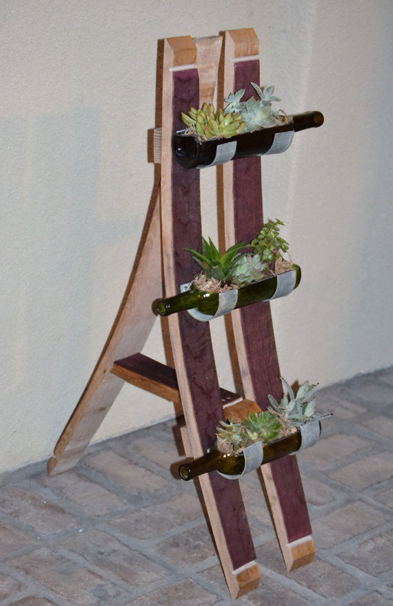 Floor standing bottle garden display for succulents/cacti
