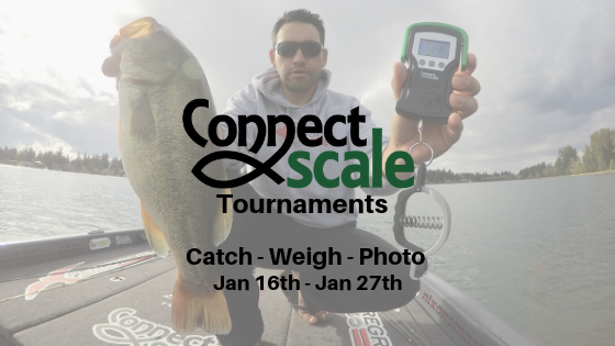 January Catch Weigh Photo Tournament