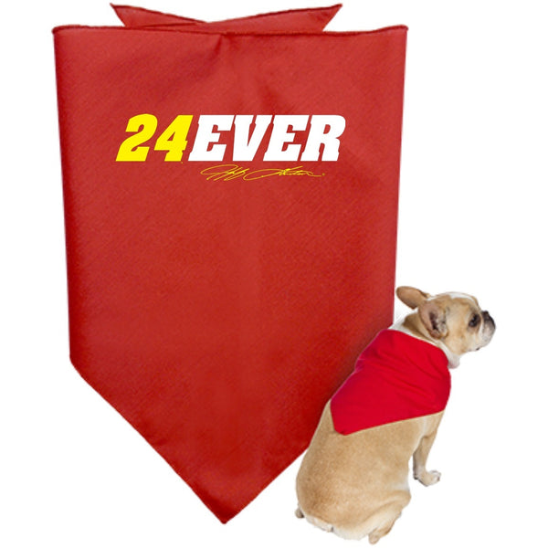 Jeff Gordon 24Ever Doggie Bandana