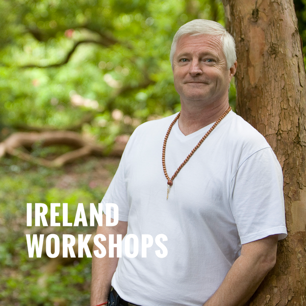 Ireland Workshop Recording - 2014