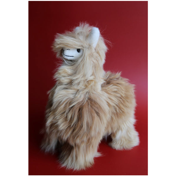 Medium Alpaca - Brown