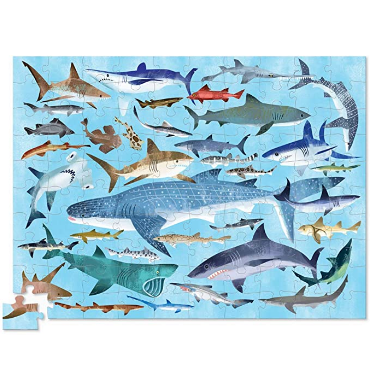 Thirty-Six Sharks Puzzle