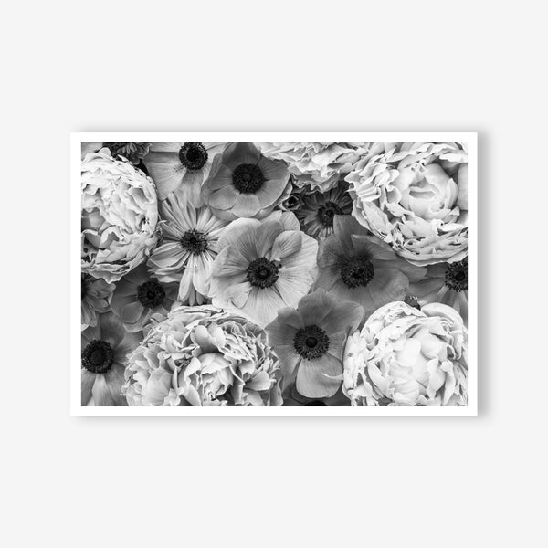 Peony and Anemone floral wall art print black and white botanical photography
