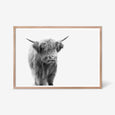 Highland Cow animal wall art print black and white animal photography with oak frame