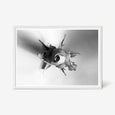 Rose floral wall art print black and white botanical photography with white frame