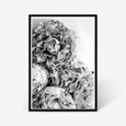 Peonies floral wall art print black and white botanical photography black frame
