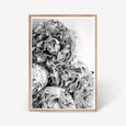 Peonies floral wall art print black and white botanical photography oak frame