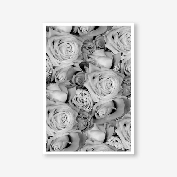 Roses floral wall art print black and white botanical photography